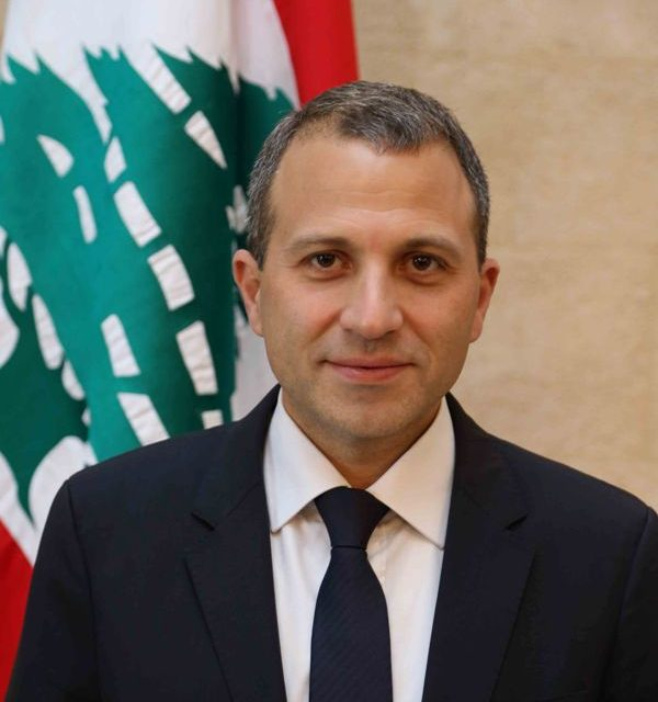 Bassil: We do not stick to any election law